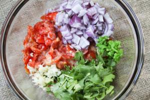 Chunky Tomato Salsa Cilantro Blender