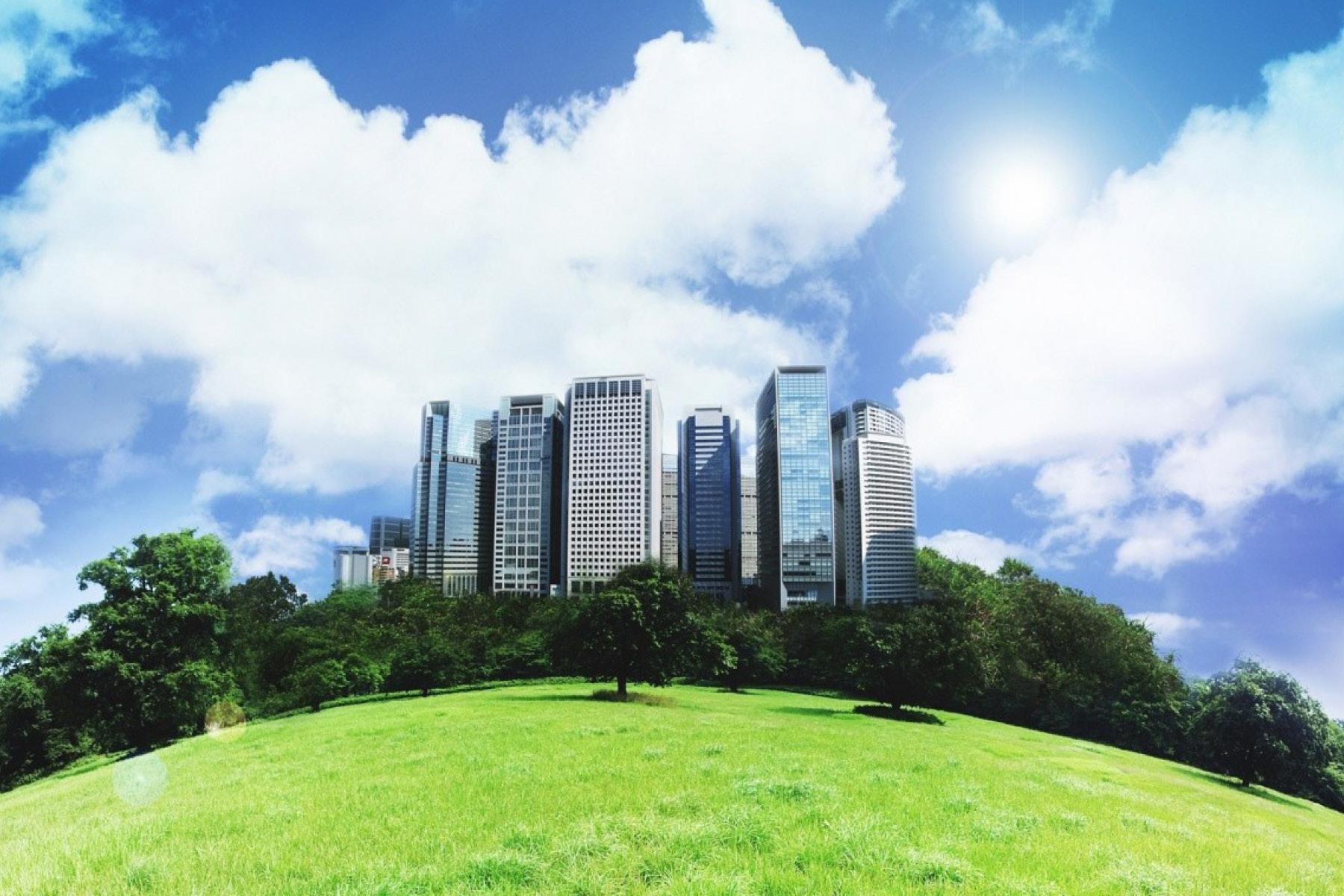 Top 5 greenest cities in the u s back to the roots blog for Top 5 best cities in usa