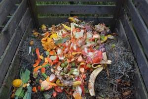 CompostFoodWasteGreenEarth