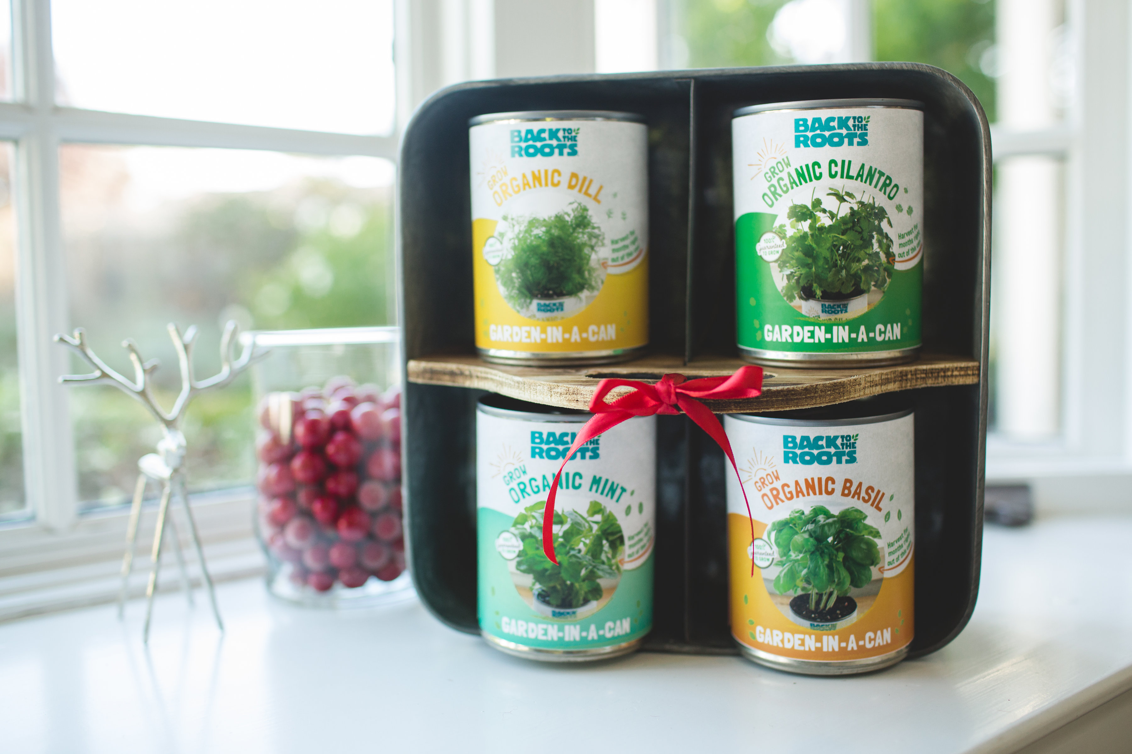back to the roots garden in a can gift set best green gift best gift for gardeners indoor gardening gift